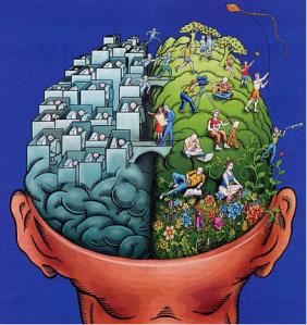 English brain